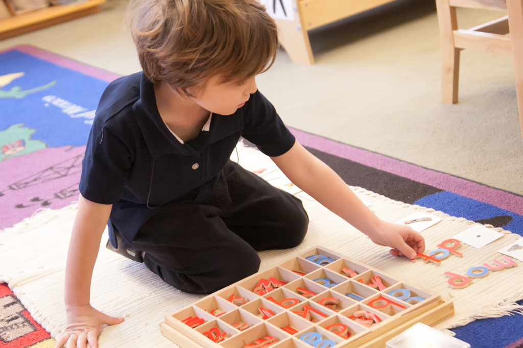 deviation montessori The objectives of the montessori method to normalize a child by providing an environment that trains all senses and improves his perceptions to help him making a higher form of personality that remained concealed under the mask of deviation.